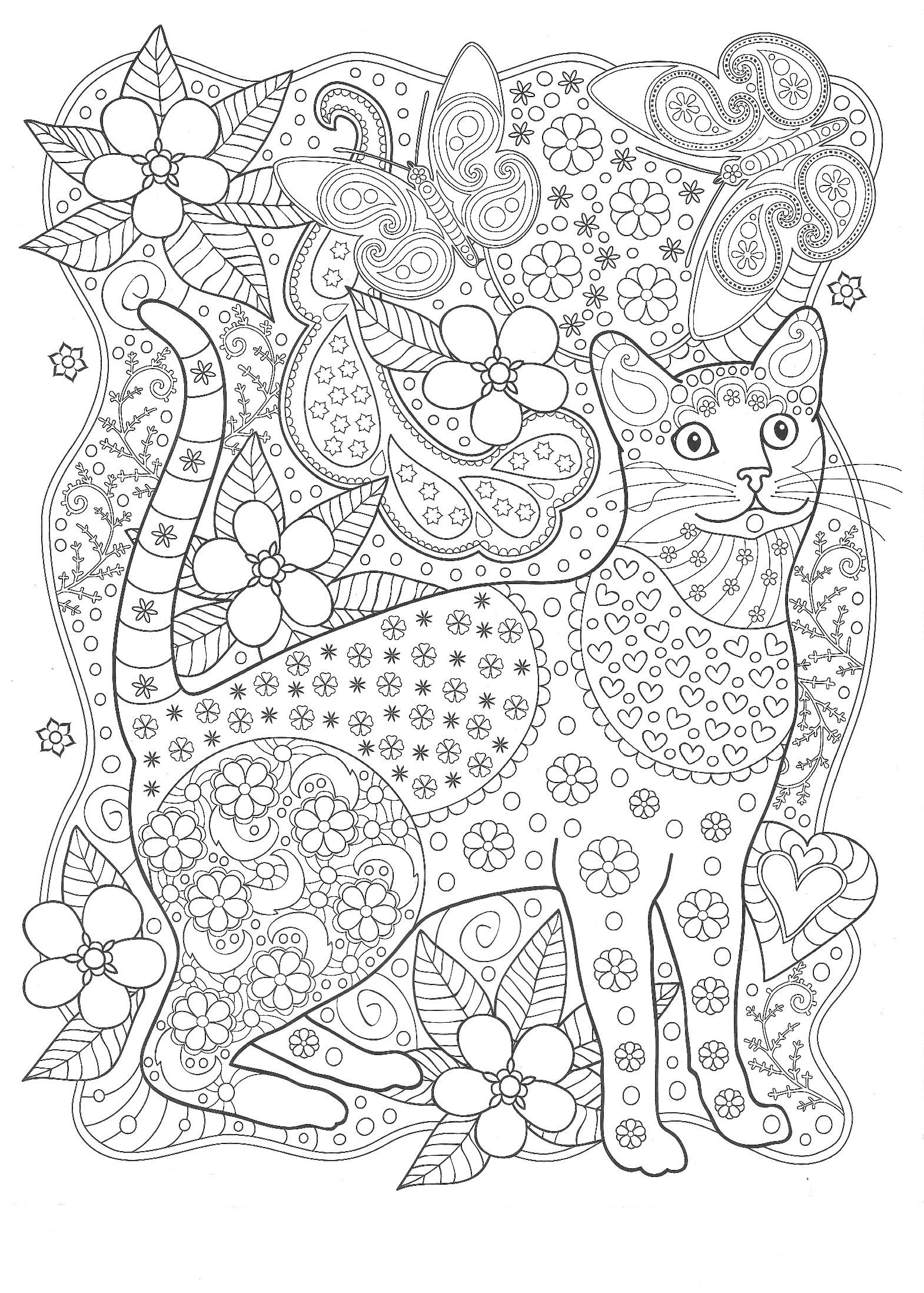 Кот с бабочками