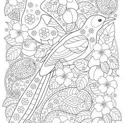 Птицы с цветами