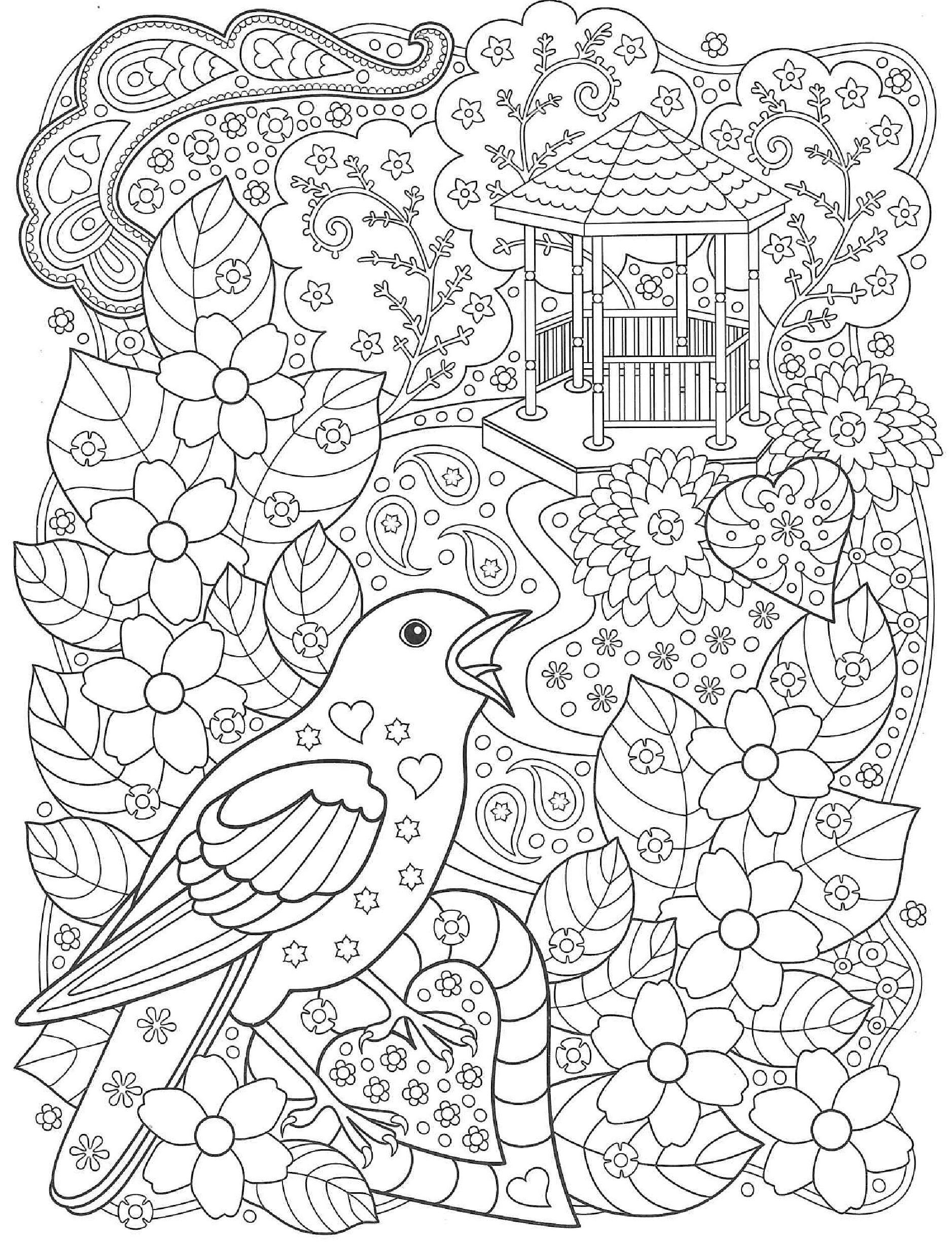 Pticy V Sadu Pticy Raskraski Antistress