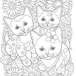 Три кота в саду