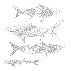 Акулы с узором