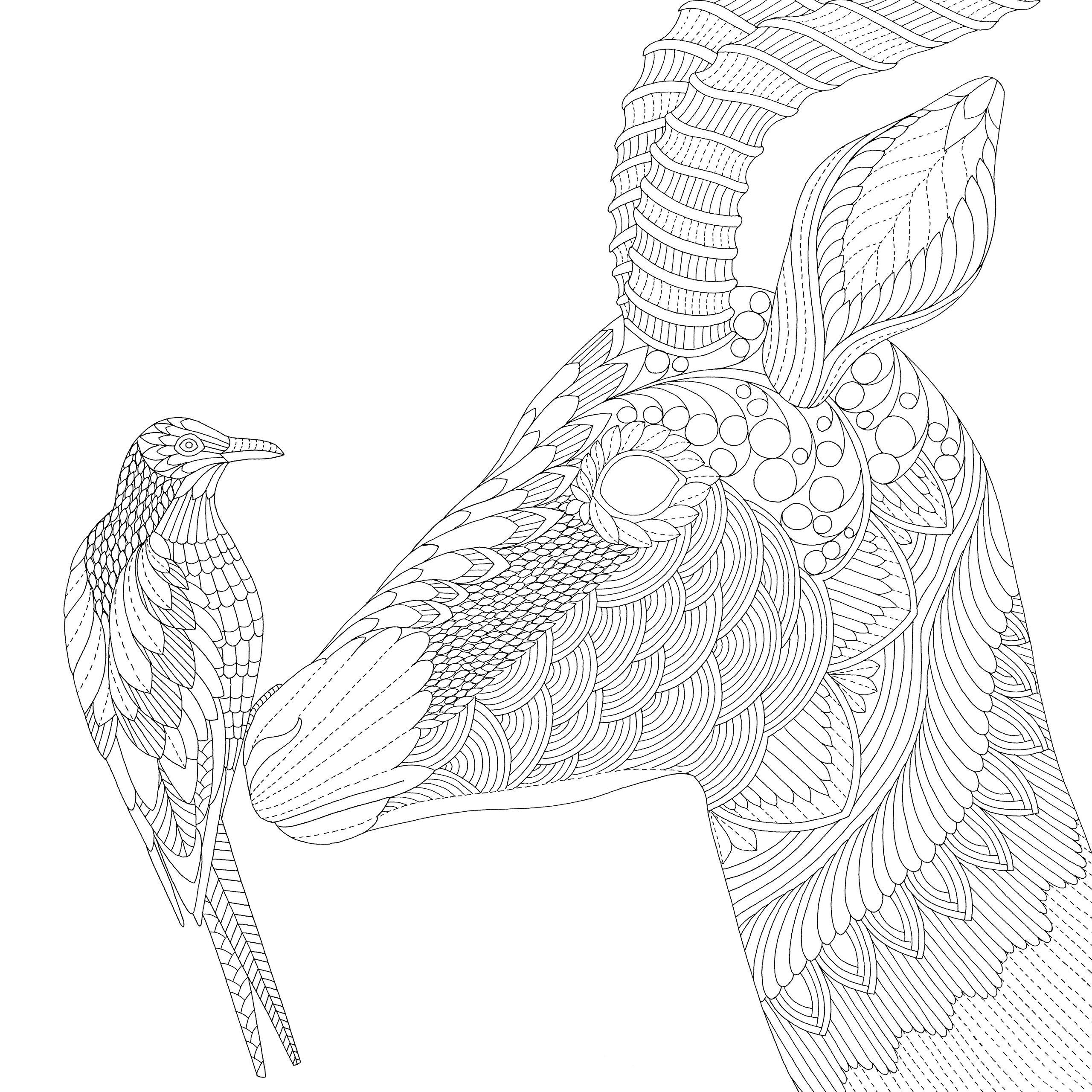 Антилопа с птицей на носу
