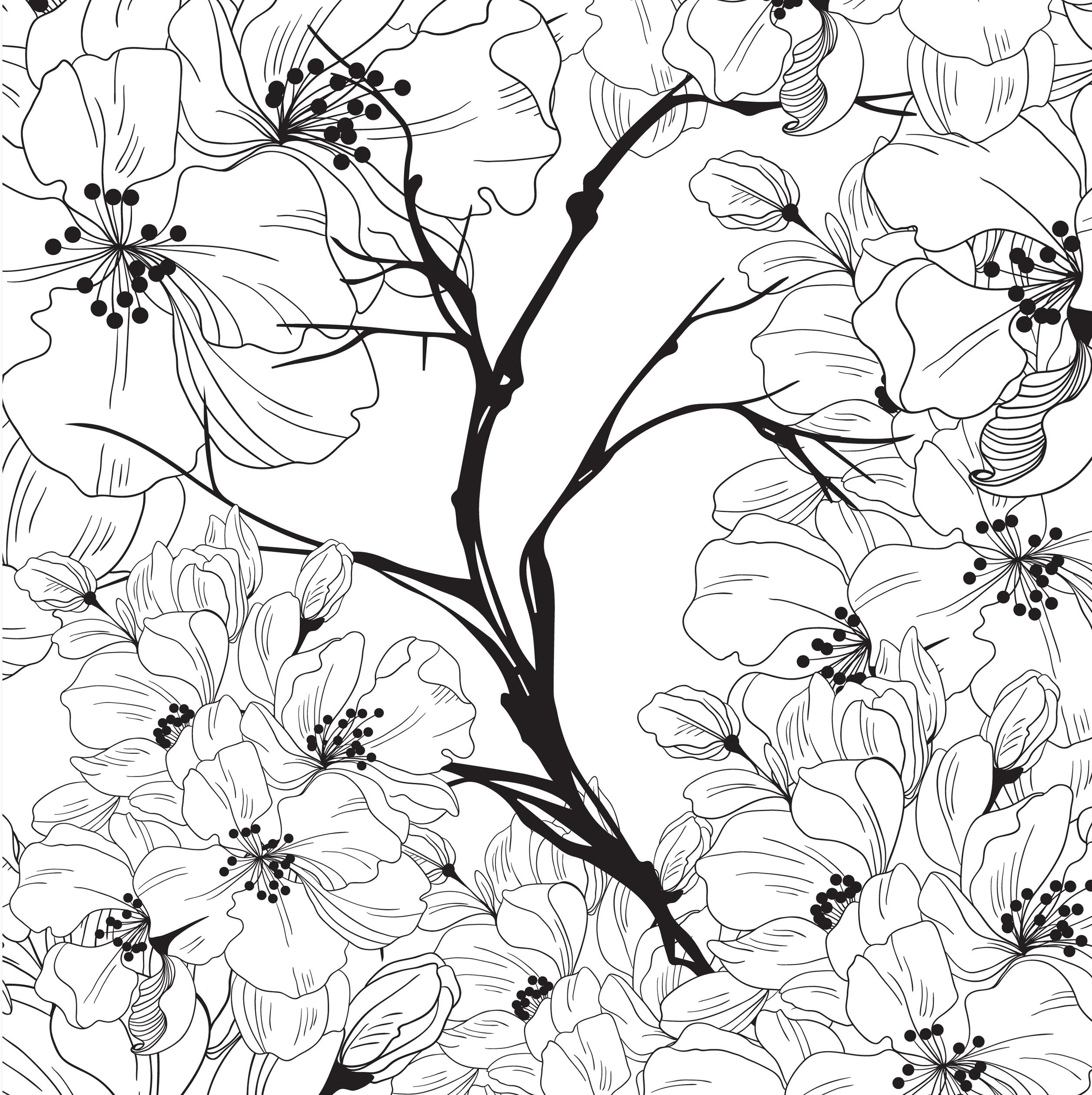 Сакура - Цветы - Раскраски антистресс