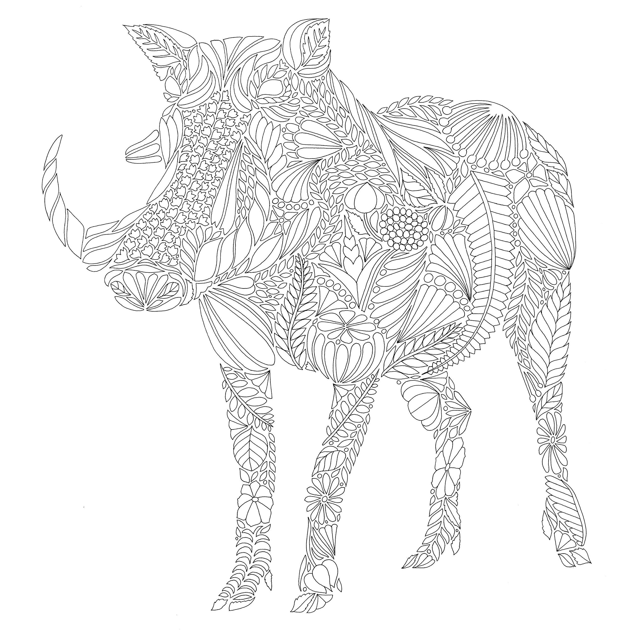 Кабан - Животные - Раскраски антистресс