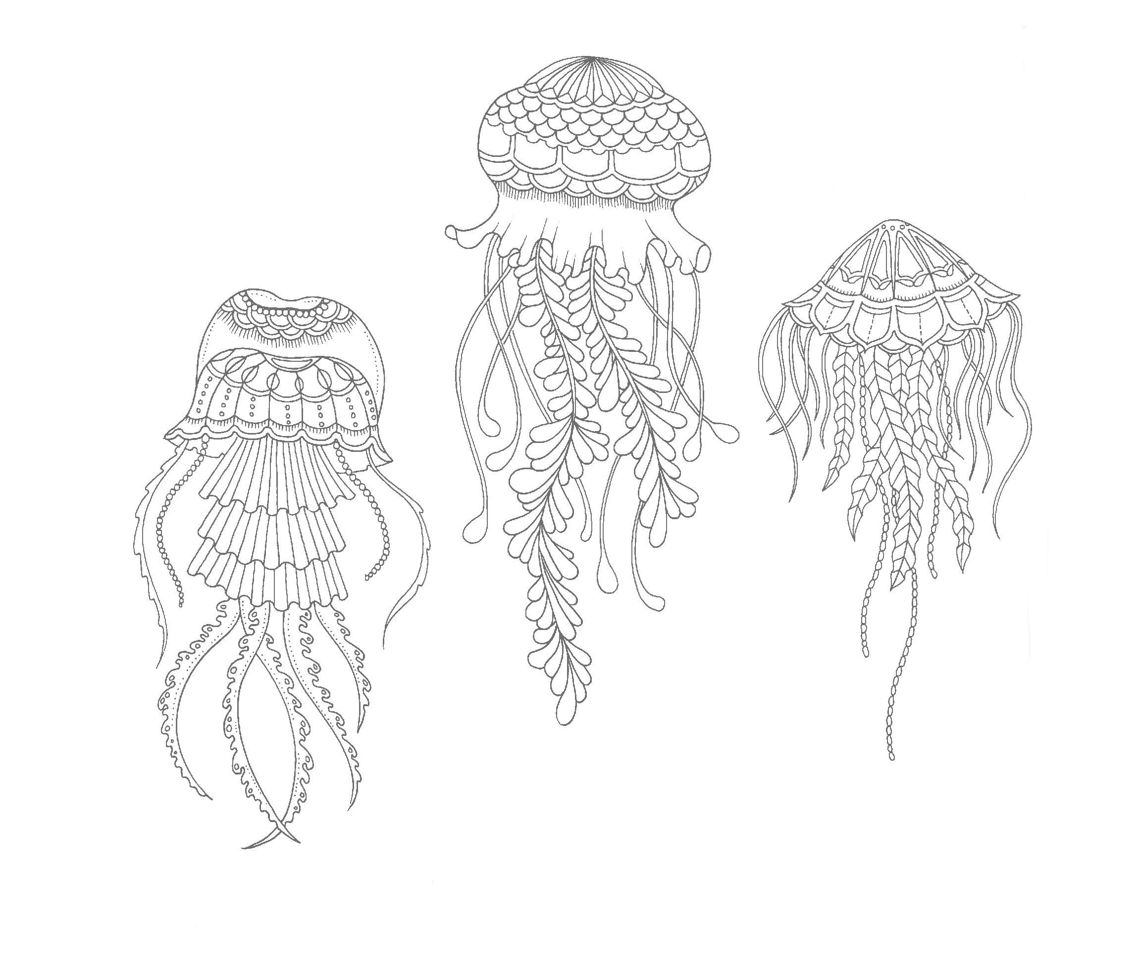 раскраска медузы под водой невесты своими