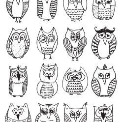 Много разных совушек