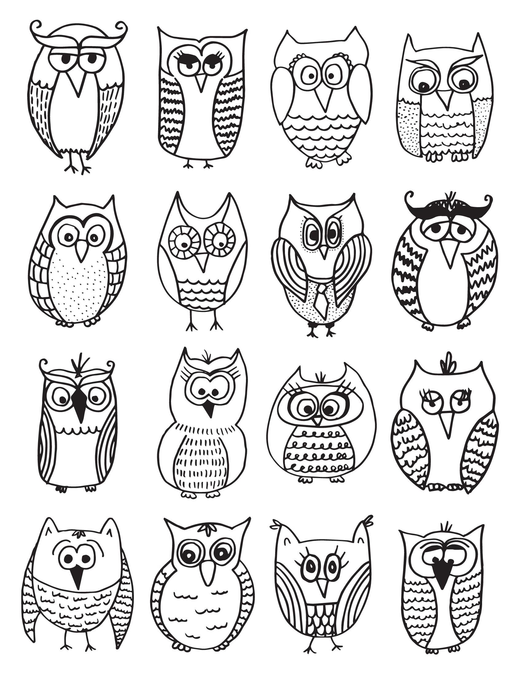 много разных совушек птицы раскраски антистресс
