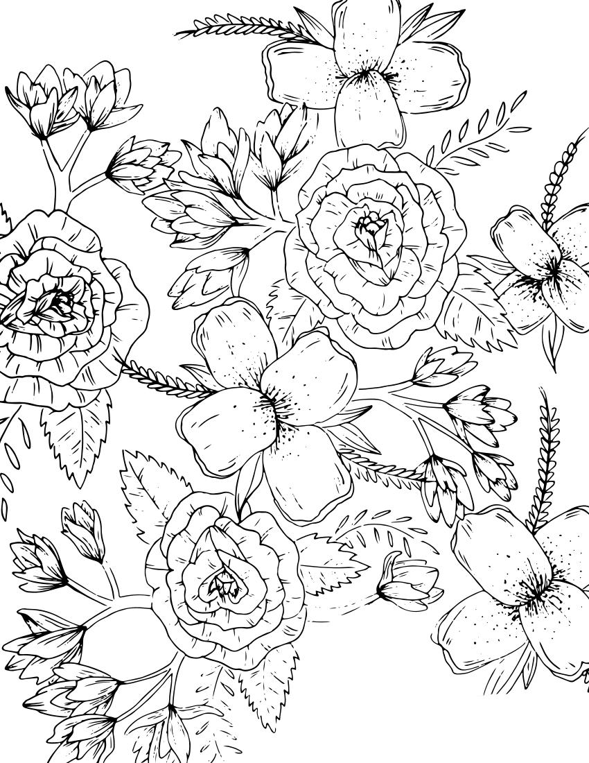 Цветы и бутоны