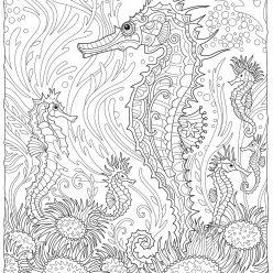 Раскраски антистресс «Морские коньки на глубине океана», чтобы распечатать