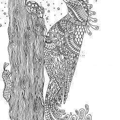 Раскраски антистресс «Дятел и драгоценные камни», чтобы распечатать
