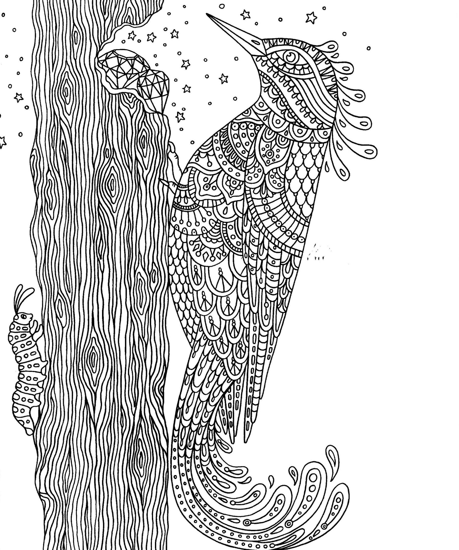 дятел и драгоценные камни птицы раскраски антистресс