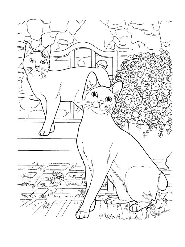 Раскраски сложные для взрослых антистресс «Коты породы японский бобтейл», чтобы распечатать