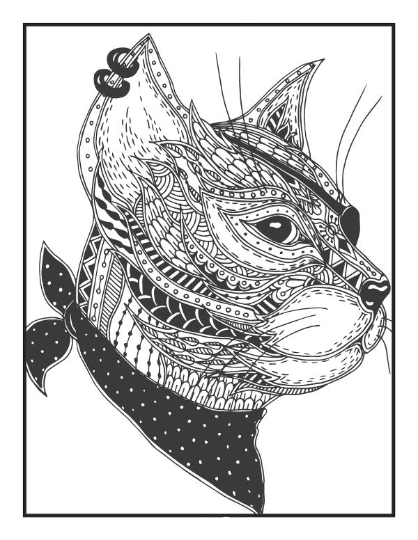Кот пират - Животные - Раскраски антистресс