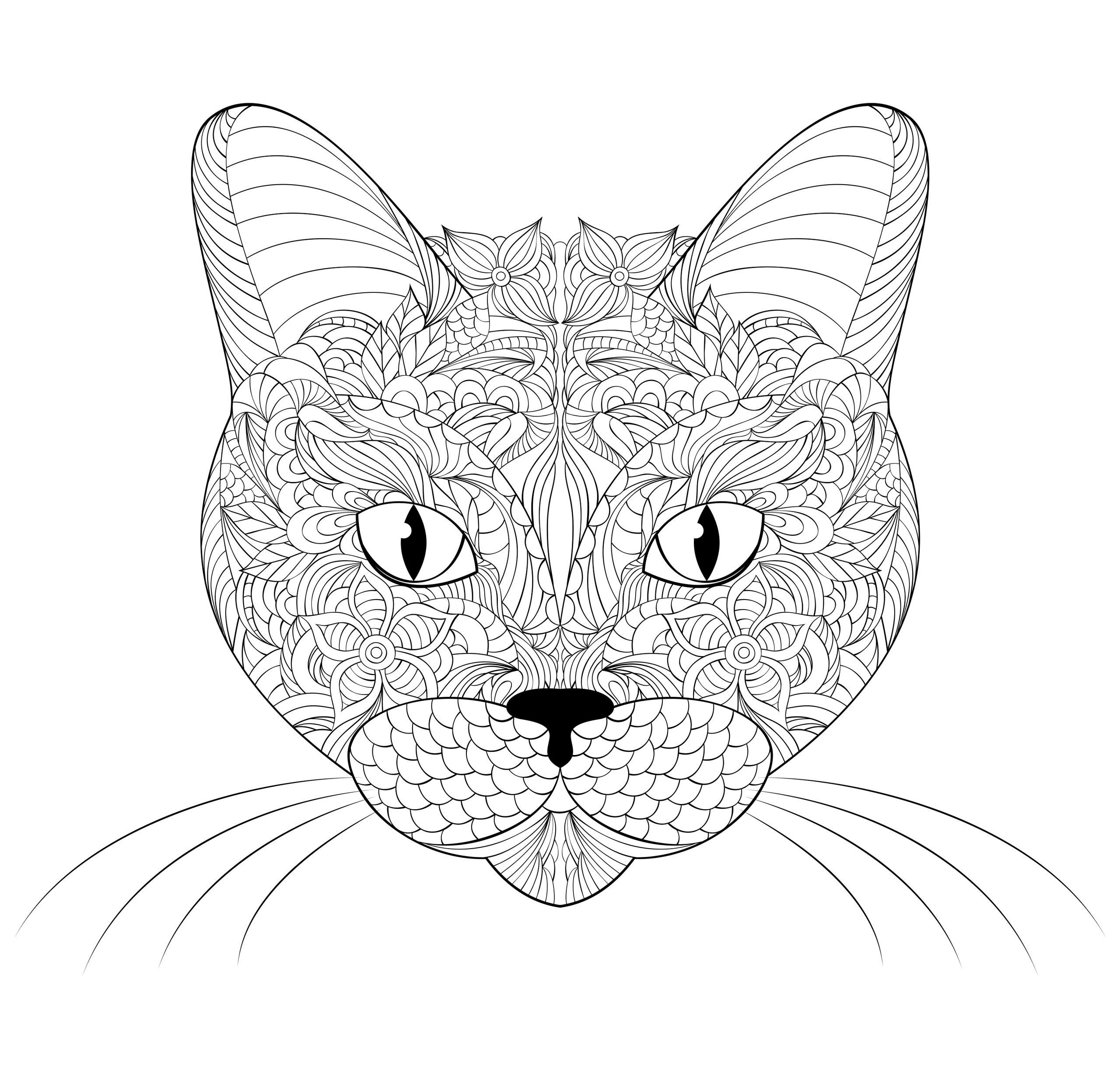 Раскраски антистресс в хорошем качестве «Морда кошки», чтобы распечатать