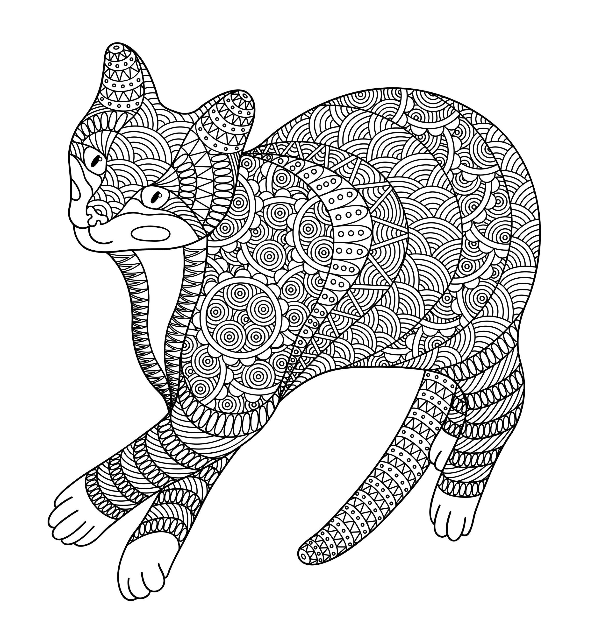 Полосатый кот - Животные - Раскраски антистресс