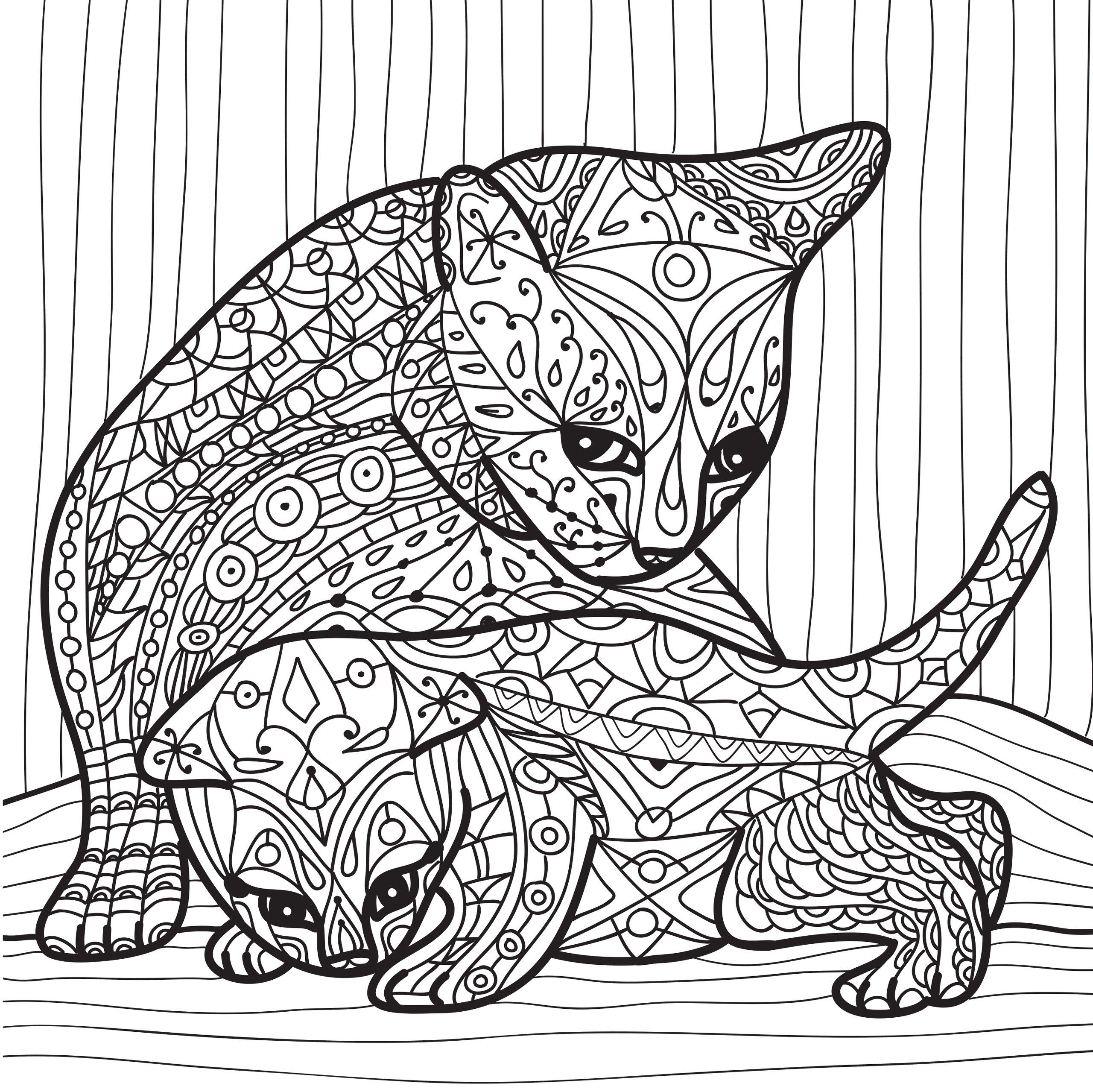 Раскраски антистресс «Кошка с котенком», чтобы распечатать