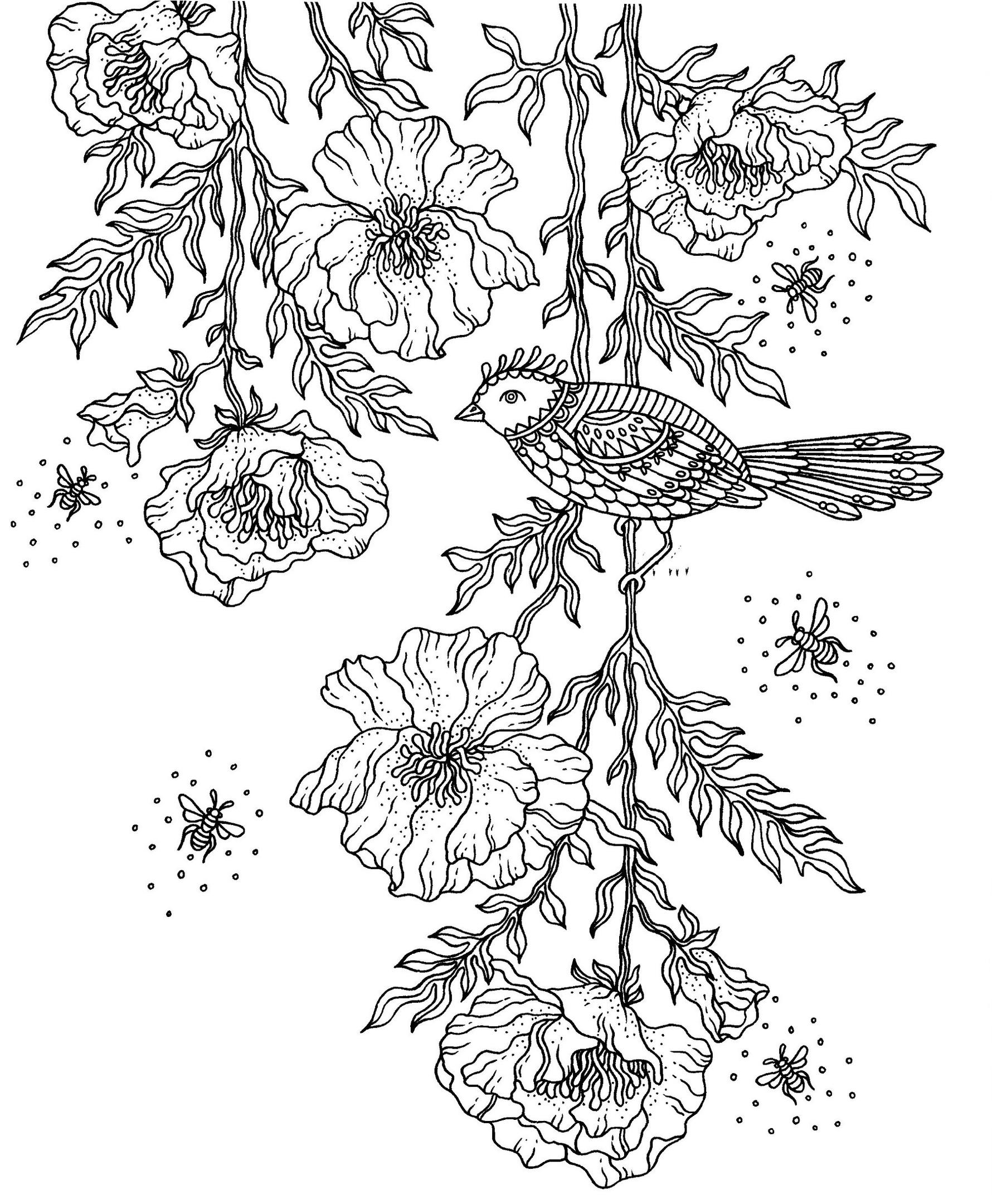 Раскраски антистресс для взрослых «Птица на маках», чтобы распечатать