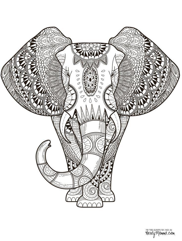 Раскраски антистресс - Индийский слон