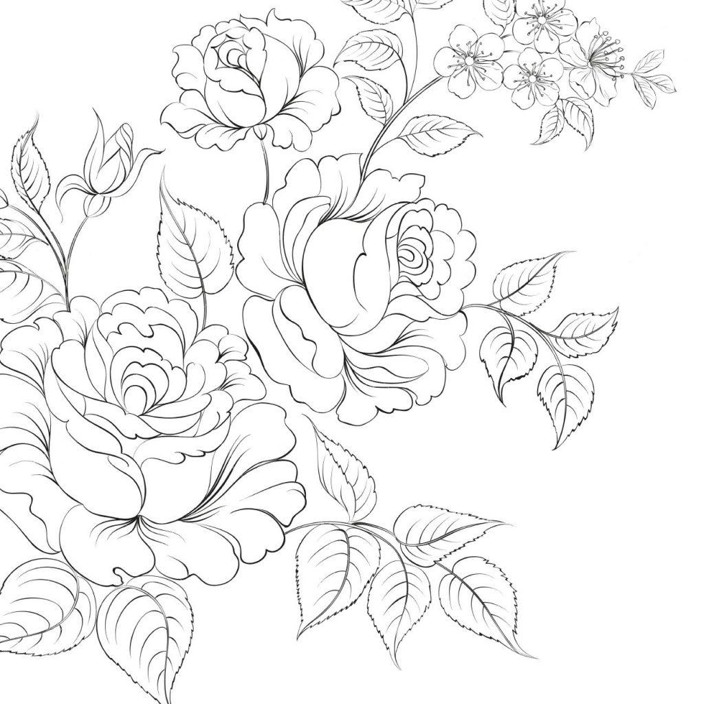 Раскраски антистресс цветы хорошего качества «Шиповник», чтобы распечатать