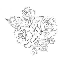 Раскраски антистресс хорошего качества «Красивый букет роз», чтобы распечатать