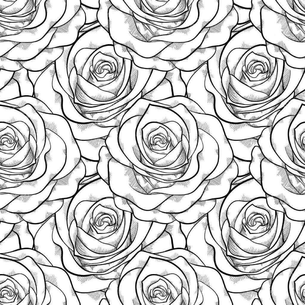 прекрасные розы цветы раскраски антистресс