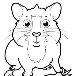 Раскраски животных для маленьких детей «Хомяк с морковкой», чтобы распечатать и раскрасить онлайн