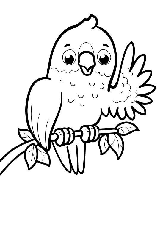 Попугайчик - Животные для малышей - Раскраски антистресс