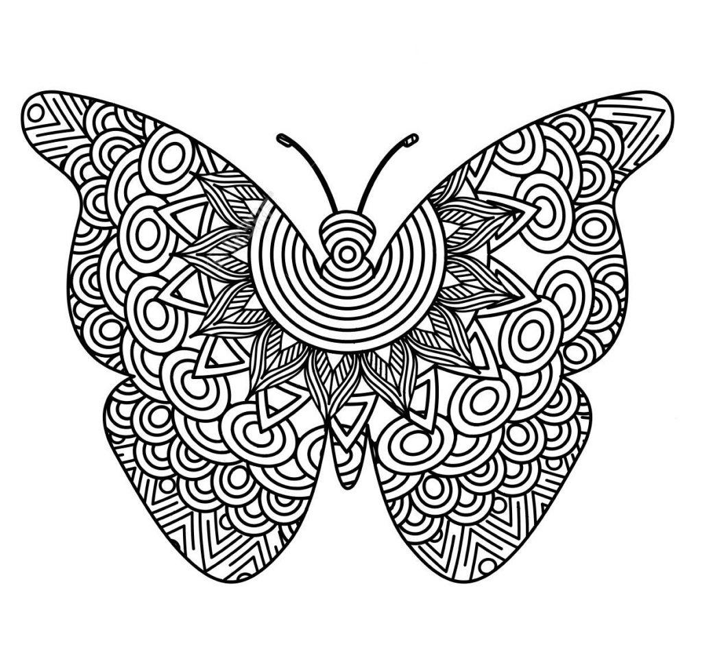 Крупная бабочка - Насекомые - Раскраски антистресс