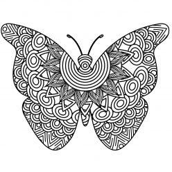 Раскраска арт терапия насекомые «Крупная бабочка», чтобы распечатать бесплатно