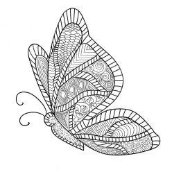 Раскраска арт терапия насекомые «Бабочка вид сбоку», чтобы распечатать бесплатно и раскрасить