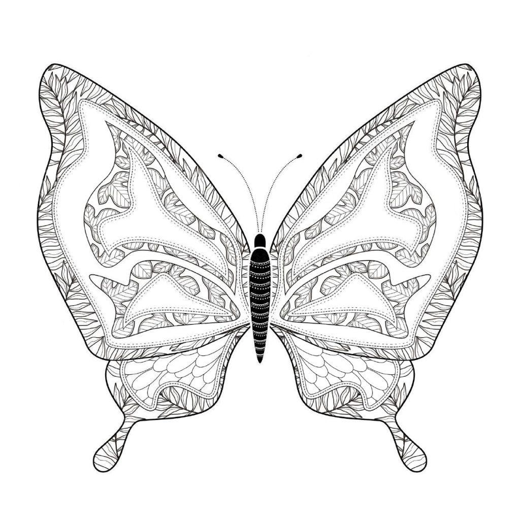 Редкая бабочка - Насекомые - Раскраски антистресс