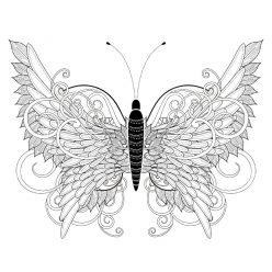 Раскраска арт терапия насекомые «Бабочка необычная», чтобы распечатать бесплатно и раскрасить