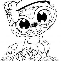 Раскраски для девочек «Милашки» Енот, чтобы бесплатно распечатать в хорошем качестве А4