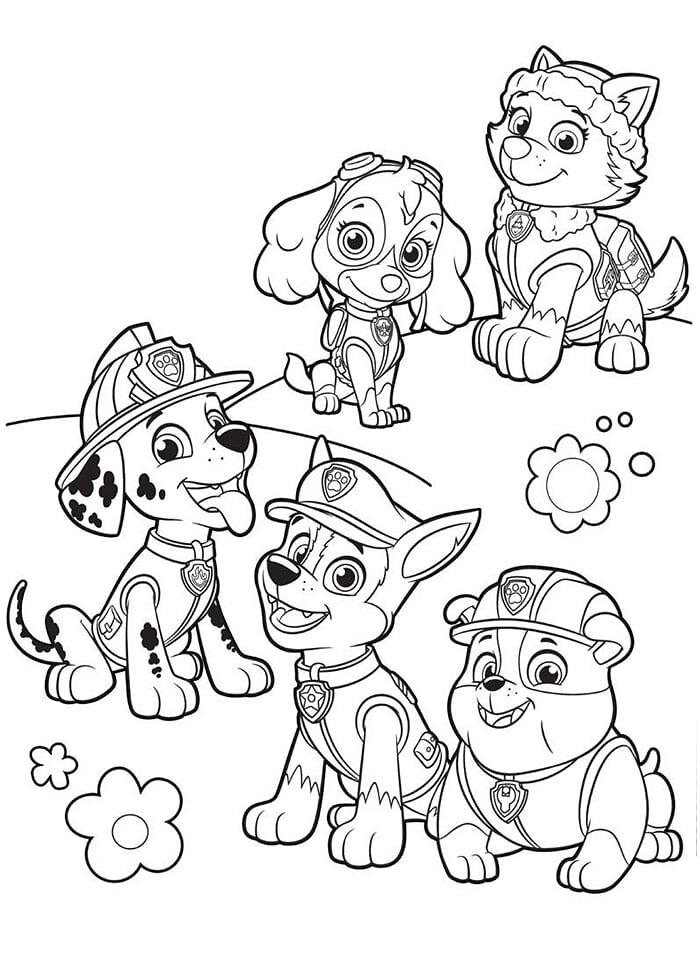 Эверест и щенячий патруль - Щенячий патруль - Раскраски ...
