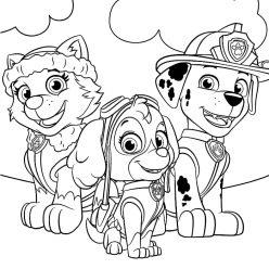 Раскраска мультфильм Маршал, Скай и Эверест, чтобы распечатать