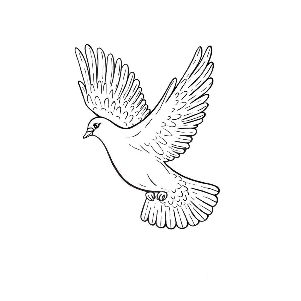 Раскраска для взрослых и детей птицы «Летящий голубь», чтобы распечатать