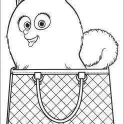 Картинки из мультфильма «Тайная жизнь домашних животных» собачка Диджет в сумочке, чтобы бесплатно распечатать