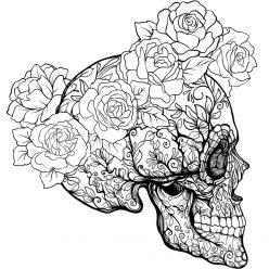 Раскраски хэллоуин антистресс «Череп профиль с розами», чтобы распечатать