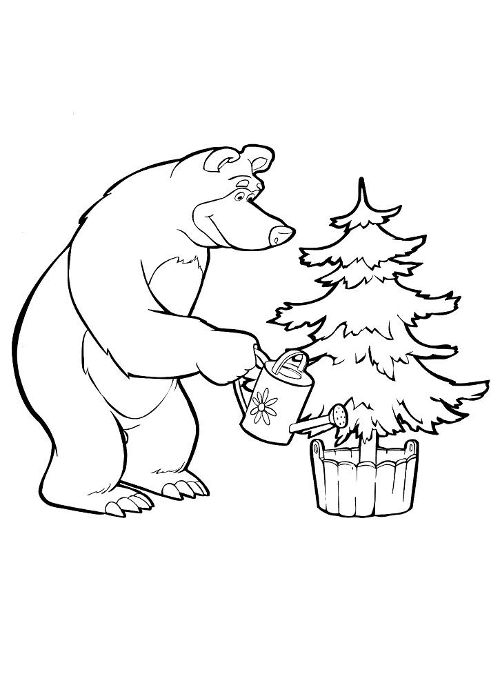 Раскраска из мультфильма «Маша и Медведь» Мишка и елка, чтобы распечатать