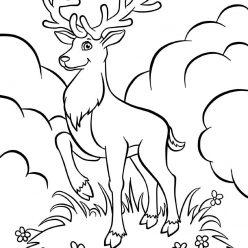 Раскраски животных для детей «Олень», чтобы распечатать и раскрасить