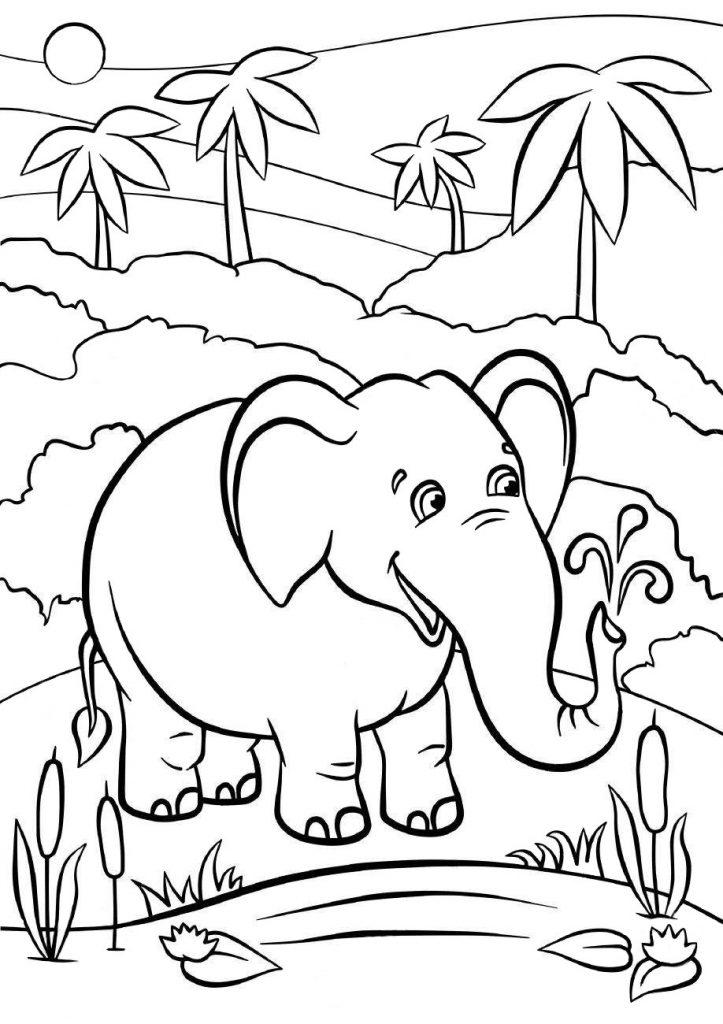 Раскраски животных для детей «Слон», чтобы распечатать и раскрасить