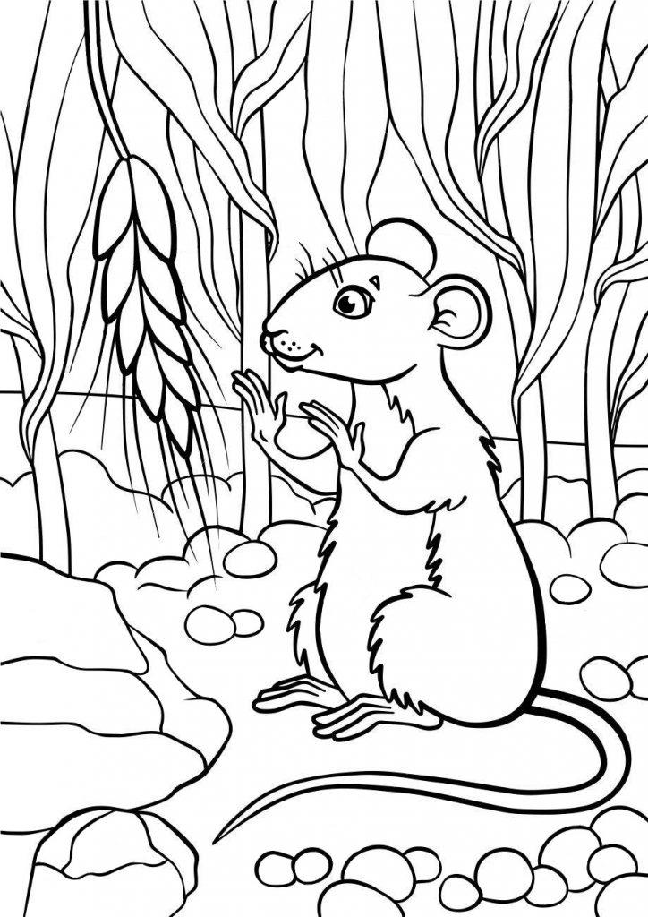 Раскраски животных для детей «Мышка с колоском», чтобы распечатать и раскрасить