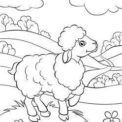 Раскраски животных для детей «Овечка на лугу», чтобы распечатать