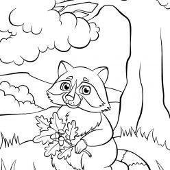 Раскраски животных для детей «Енот с веточкой дуба», чтобы распечатать и раскрасить